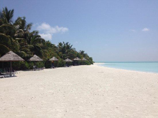 Cinnamon Hakuraa Huraa Maldives: Beach