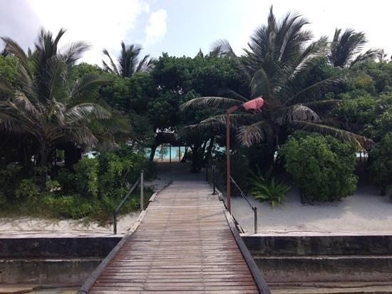Summer Island Maldives: acces plage a partir de chambres sur pilotis