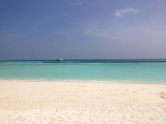 Summer Island Maldives: lagon