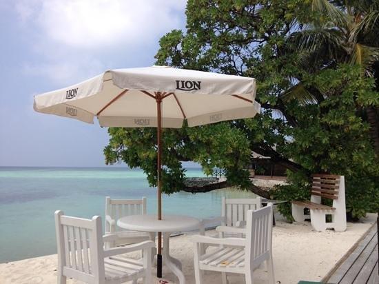 Summer Island Maldives: terrasse bar au bord de l'eau