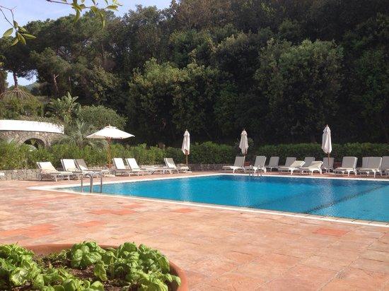 Garden & Villas Resort: Pool area