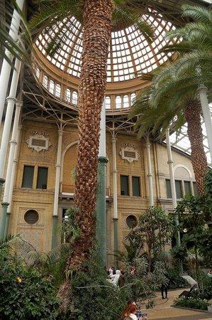 Ny Carlsberg Glyptotek : Jardín interior