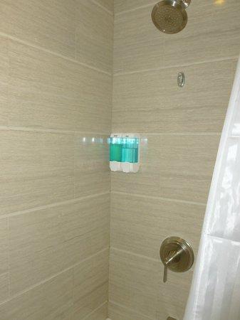 Ramada Flushing Queens: Shower