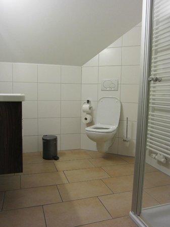 Brauereigasthof Schneider: Bathroom
