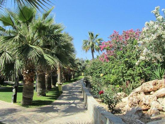 Atlantica Aeneas Hotel: Garden