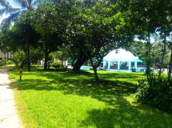 Southern Palms Beach Resort : Beautiful grounds