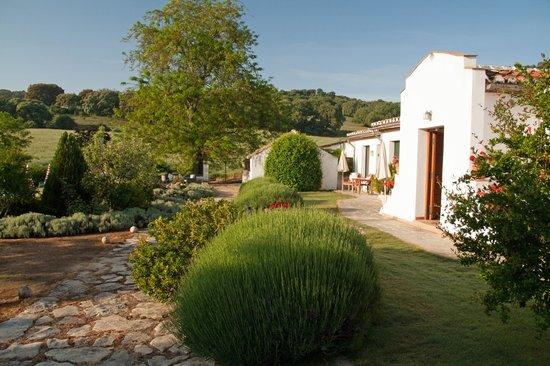 Cortijo de Las Piletas : Uteområdet foran  rommene som vender mot bassenget