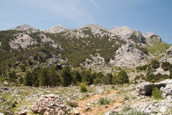 Cortijo de Las Piletas : Naturen rundt Ronda - mange turmuligheter