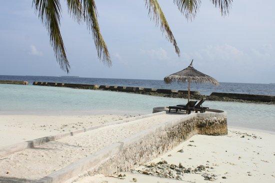 Ellaidhoo Maldives by Cinnamon : plage