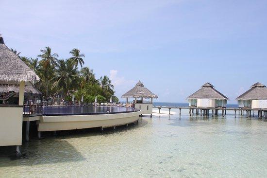 Ellaidhoo Maldives by Cinnamon : piscine