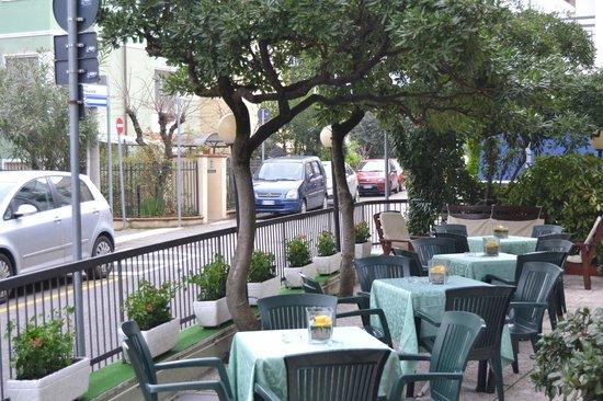 Hotel Adelphi: giardino