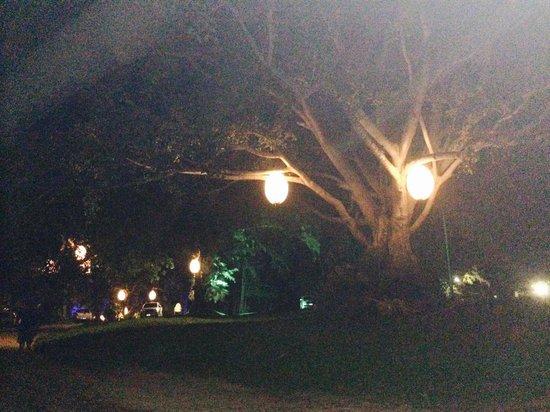 Twinpalms Phuket: The pathway to the beach at night