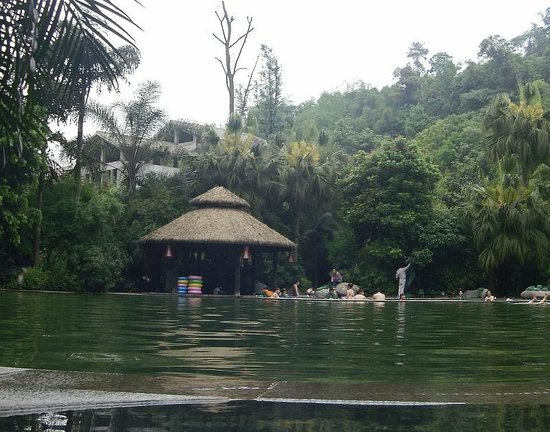 Tianci Huatang Forest Spring Hotel: The fish pool usually had a cluster of bathers