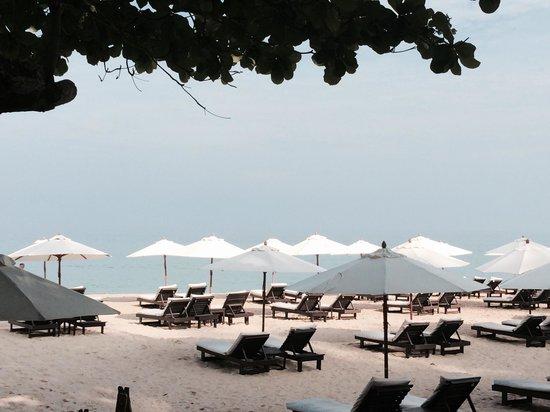 Twinpalms Phuket: Surin Beach