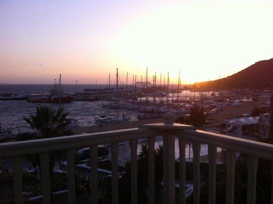 Olia Hotel: De notre balcon vue sur le nouveau port