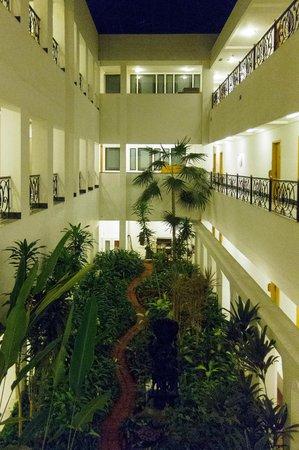 Internal Garden Court