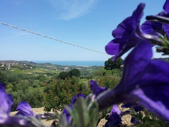 B&B Il Giardino Mediterraneo: vista panoramica