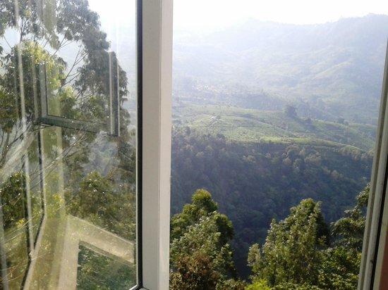 Devonshire Greens: view from restaurant