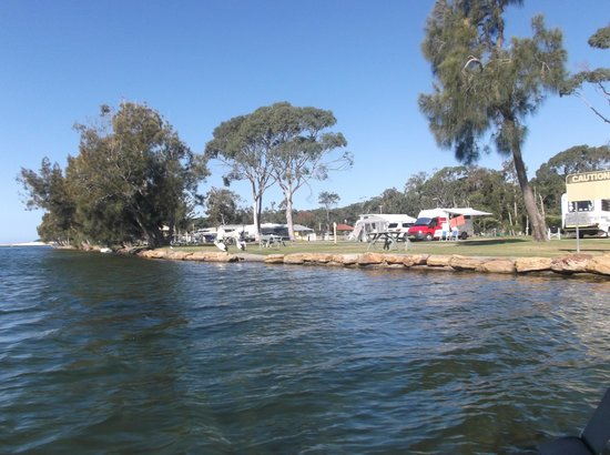 Lake Conjola Entrance Holiday Park: the campsite