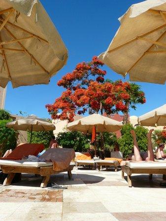 The Makadi Palace Hotel: pool view