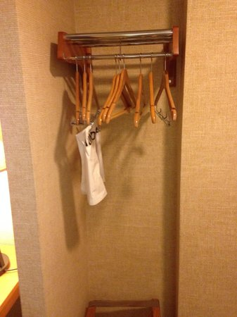 Millennium Cincinnati: Nice closet!