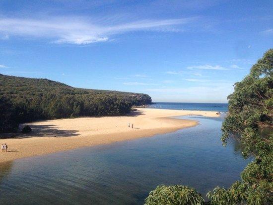 UDU - Understand Down Under: Sydney Night & Day Experiences: Royal National Park