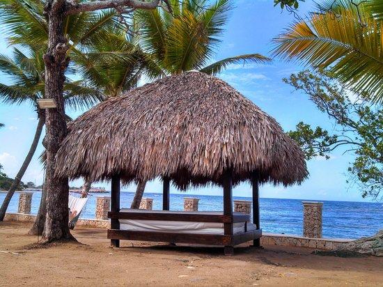 Cofresi Palm Beach & Spa Resort: beautiful!