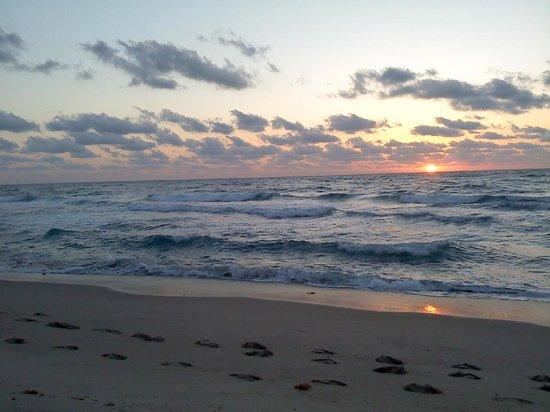 Palm Beach Shores Resort & Vacation Villas: Beach sunrise