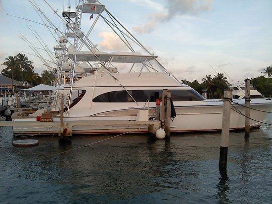 Palm Beach Shores Resort & Vacation Villas: Sailfish