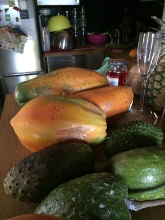 One On Marlin: ORGANIC Sour Sop & Papaya