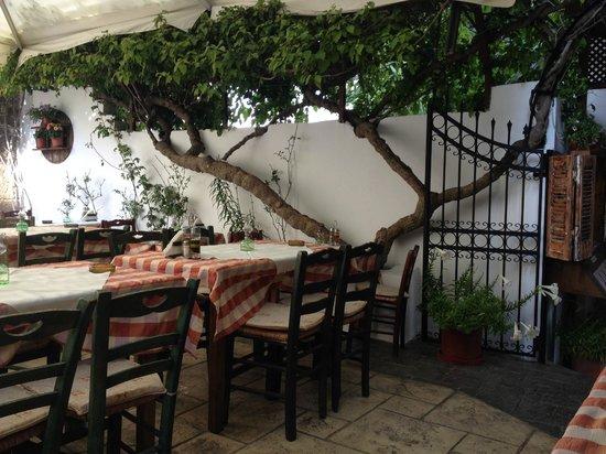 Avli Restaurant : Inside view