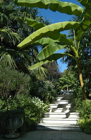 Hotel 4 Stagioni: Giardino & Pool