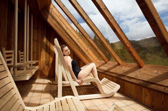 nature spa la cheneaudiere photo de hostellerie la. Black Bedroom Furniture Sets. Home Design Ideas