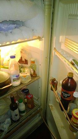 Hello Hostel: The fridge and freezer