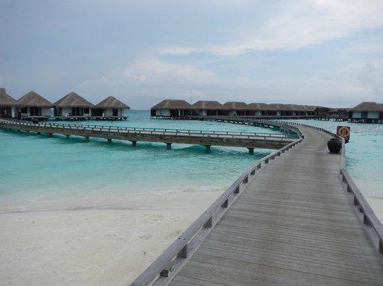 Velassaru Maldives: Water Villa