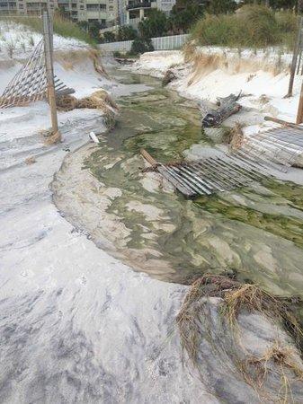 Edgewater Beach Condominium : Standing water