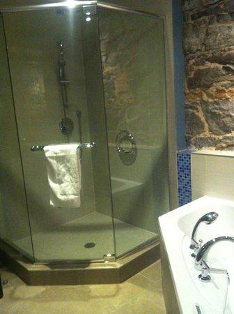 Hotel Nelligan: huge shower