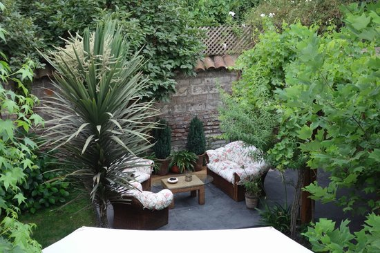 Carménere: Carmenere Backyard