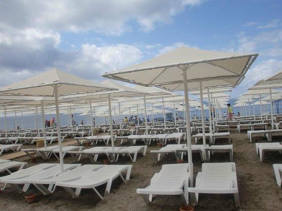 Aydinbey Gold Dreams Hotel: пляж