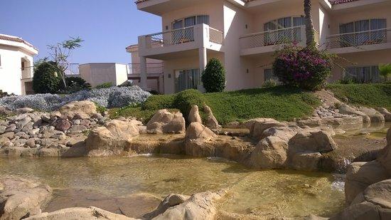 Radisson Blu Resort, Sharm El Sheikh: our room overlooking waterfall pool