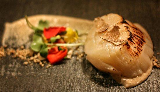 EM Restaurant: Мурманский гребешок с пьемонтским трюфелем