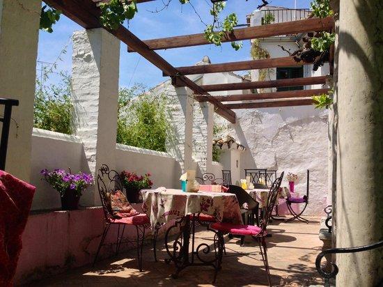 Apartamentos Carmen del Jazmin : tea gardem