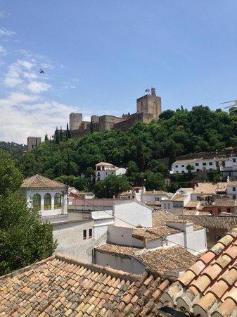 Apartamentos Carmen del Jazmin : Alhambra views