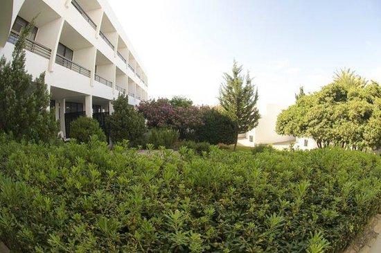 Almyra Hotel: отель и местность