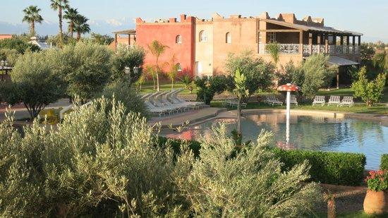 Résidence Habiba : Appartements /extérieur