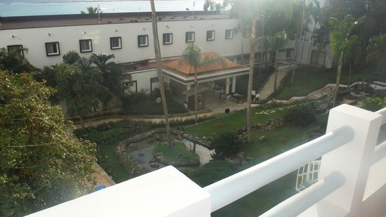 Be Live Experience Hamaca Suites : from my room