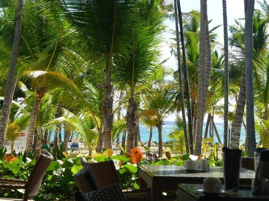 ClubHotel Riu Bambu: La vue, terrasse buffet