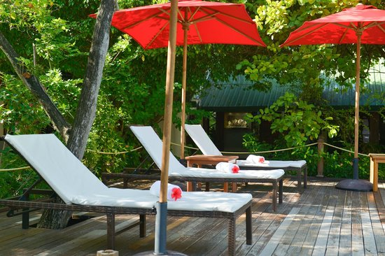 smartline Eriyadu: Swimming Pool
