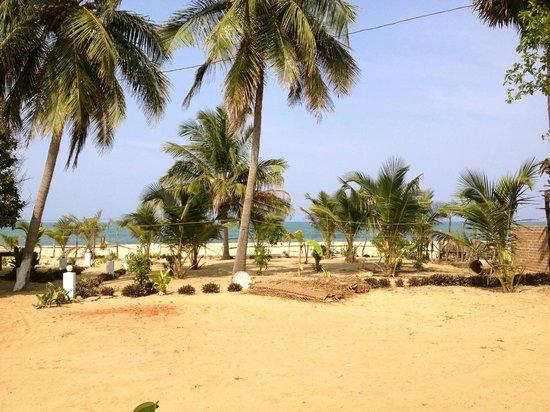 Paradise Sand Beach Hotel: Beach view