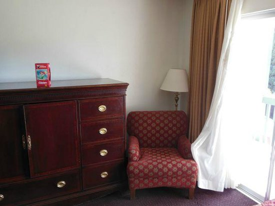 Anaheim Plaza Hotel and Suites: Relaxing chair